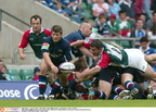 Will-Johnson-Leicester-Tigers-Sale-2-29-5-2004